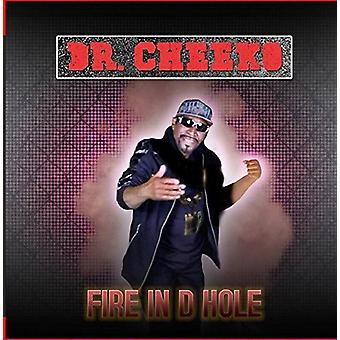 Dr. Cheeko - Fire in D Hole [CD] USA import