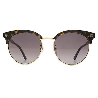 Gucci Tiger Stud Round Browline Style Sunglasses In Havana