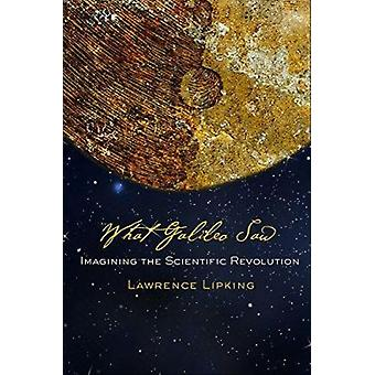 What Galileo Saw - Imagining the Scientific Revolution by Lawrence Lip