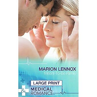 Meant-To-Be Family (Mills & Boon Largeprint Medical)