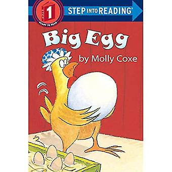 Big Egg (Early Step into Reading)
