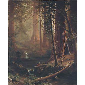 Albert Bierstadt - Giant Redwood Trees of California Poster Print Giclee