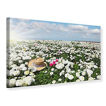 Lona impressão Primavera flor Meadow