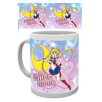 Sailor Moon Sailor Moon Boxed Drinking Mug