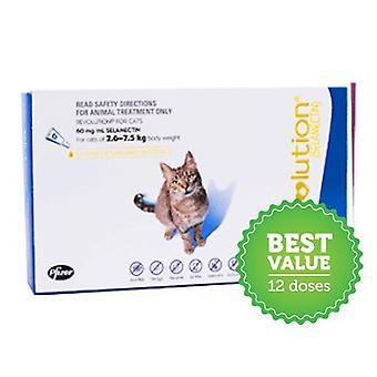 Revolução para gatos azuis Pk 12