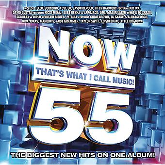 Various Artist - Now 55: That's What I Call Music [CD] USA import
