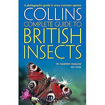 Britannici insetti: Una guida fotografica per ogni specie comuni (Collins guida completa)