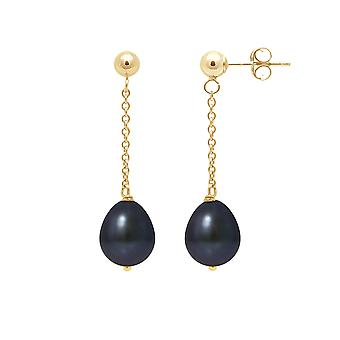 Earrings ears woman Pendantes pearls of Culture black and yellow gold 750/1000