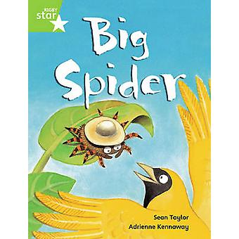 Rigby Star Guided Phonic Opportunity Readers Green - Big Spider Pupil