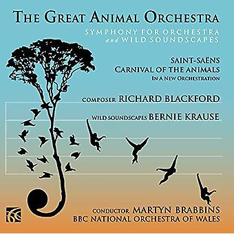 Blackford / Krause / BBC National Orch of Wales - Great Animal Orchestra [CD] USA import