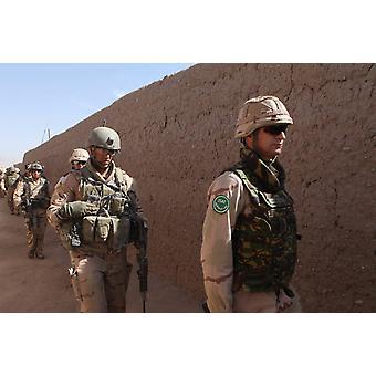 Dutch troops in Uruzgan Afghanistan Poster Print by VWPicsStocktrek Images