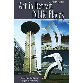 Art dans les lieux publics de Detroit (série grands lacs livres)