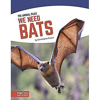 We Need Bats