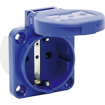 Add-on socket IP54 Blue PCE 109-0b