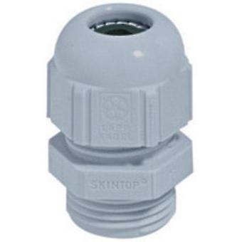 Cable gland PG11 Polyamide Light grey (RAL 7035)