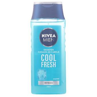 Nivea Normal Cool Men Shampoo 250 ml