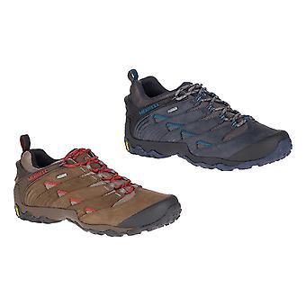 メレル メンズ チャム 7 Gtx 靴