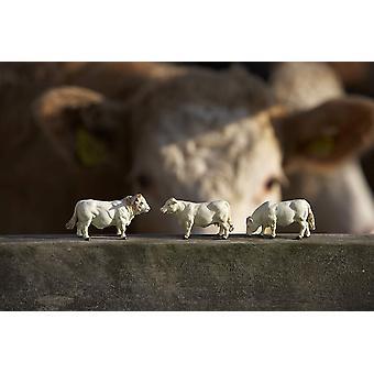 Britains Simmenta/Charolais Cows