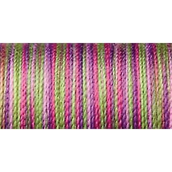 Sulky Blendables Thread 12 Weight 330 Yards Hot Batik 713 4123