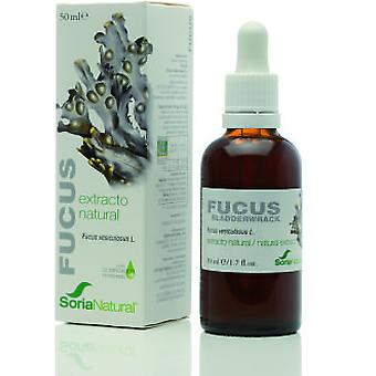 Soria Natural Extract Fucus (Herbalist's , Natural extracts)