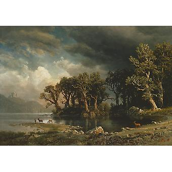 Albert Bierstadt - The coming storm Poster Print Giclee