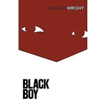 Black Boy: A Record of Youth and Childhood (Vintage Classics)