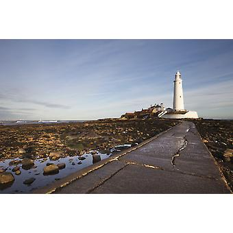 Paved Path To The Lighthouse On St Marys Island Northumberland England PosterPrint