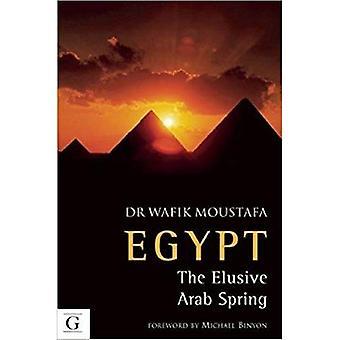 Eygpt The Elusive Arab Spring