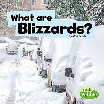 What Are Blizzards? (Wicked� Weather)
