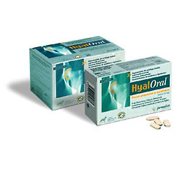 Farmadiet Hyaloral Small and Medium Breed 90 tablets (Dogs , Supplements)
