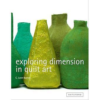 Dimensão explorando na colcha arte por C.June Braga - livro 9781849940252