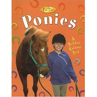 Pony's (dierenverzorging)