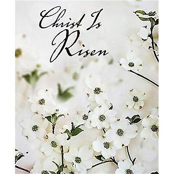 Christ Is Risen Dogwood Easter Bulletin, Large (Pkg� of 50)