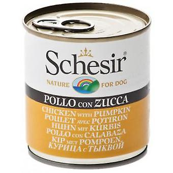 Schesir Chicken With pumpkin (Dogs , Dog Food , Wet Food)