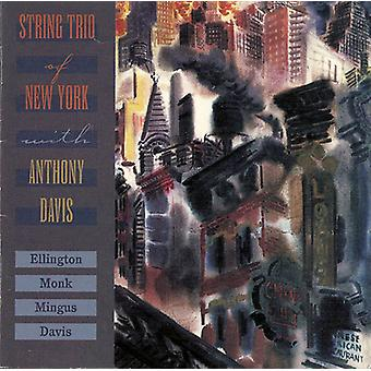 Streng Trio af New York - streng Trio af New York [CD] USA importerer