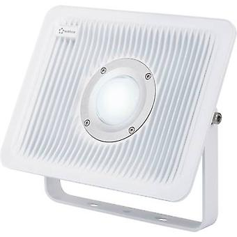 LED outdoor floodlight 50 W Cold white Renkforce