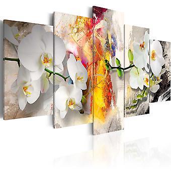 Impresión de lona - orquídeas y colores