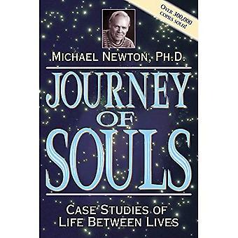 Voyage des âmes: études de cas de la vie entre les vies