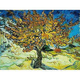 Mulberry Tree Poster Print by Vincent Van Gogh