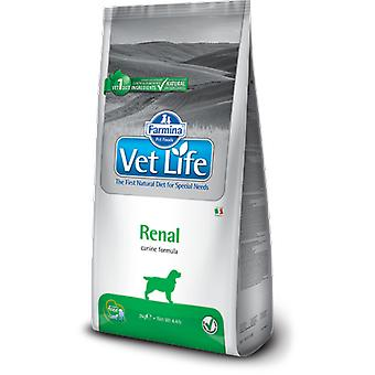 Farmina Farmine Pet Life Canine Renal (Dogs , Dog Food , Dry Food , Veterinary diet)