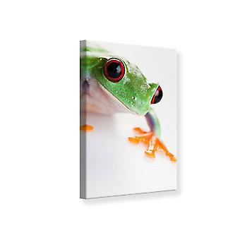 Canvas Print Frog Close up