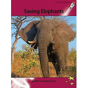 Saving Elephants by Suzette Toms - 9781927197769 Book