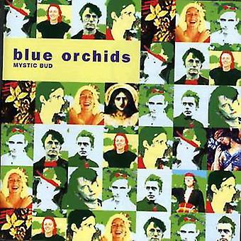 Blå orkideer - Mystic Bud [CD] USA importerer