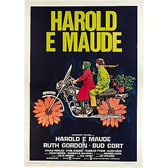 Harold and Maude Movie Poster (11 x 17)