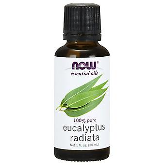 Now Foods Eucalyptus Radiata Oil 30 ml (Herbalist's , Oil essences)