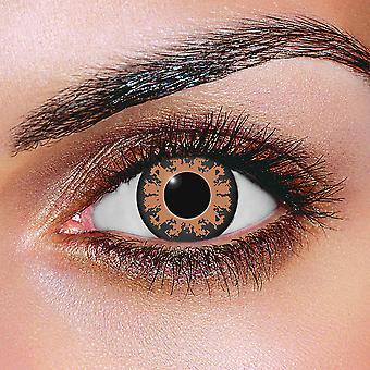 Contact Lenses - Coco Brown
