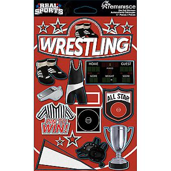 Real Sports Dimensional Cardstock Stickers-Wrestling