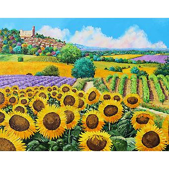 Vineyards and sunflowers in Provence Poster Print by Jean-Marc Janiaczyk