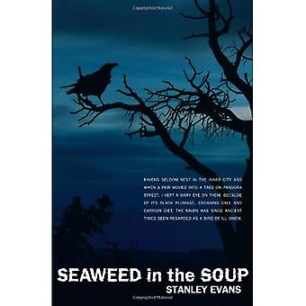 Seaweed in the Soup (Touchwood Mysteries)
