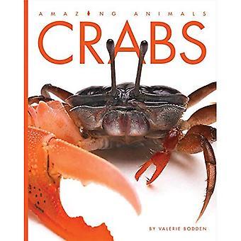 Krabbor (fantastiska djur)